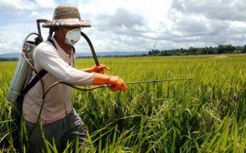Utilizzo pesticidi senza patentino:  una proposta scellerata e pericolosa