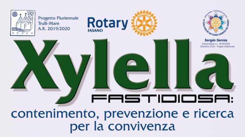 Nanotecnologie contro Xylella: il punto sulla ricerca